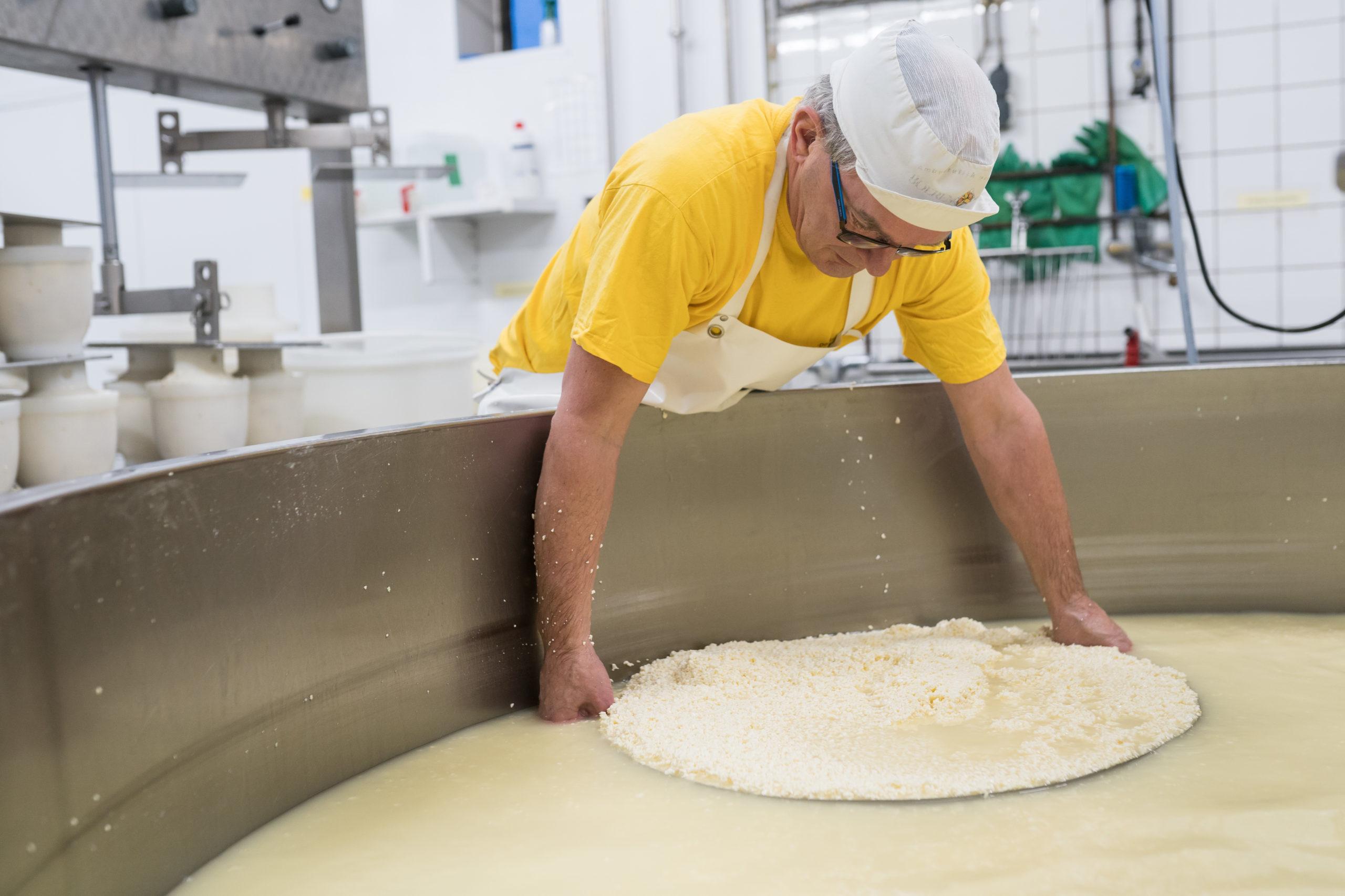 hoe maak je kaas?