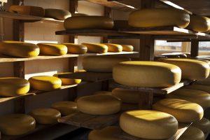 waarom is kaas geel