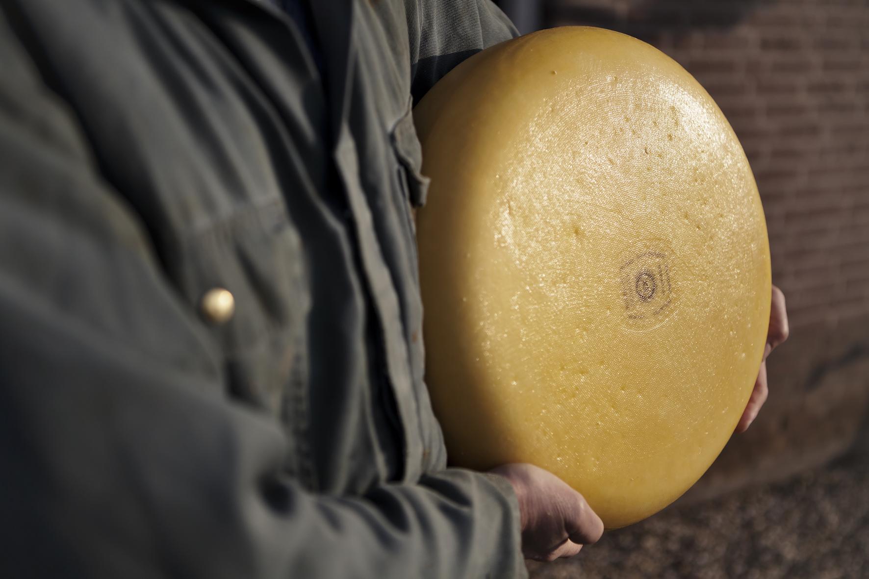 kaas bewaren houdbaarheid